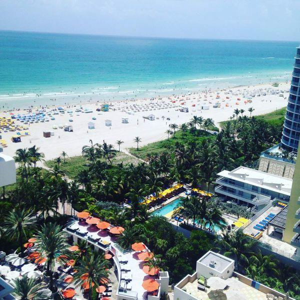 Instantanés de Floride : notre 1ère semaine