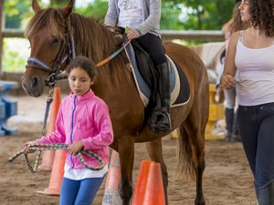 Stage Equitation Comines - 11 Aout