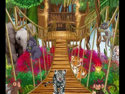 COLLECTION OHMYLOFT : visite du Royaume des animaux (2013)