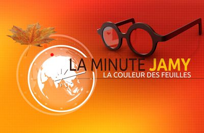 La minute Jamy