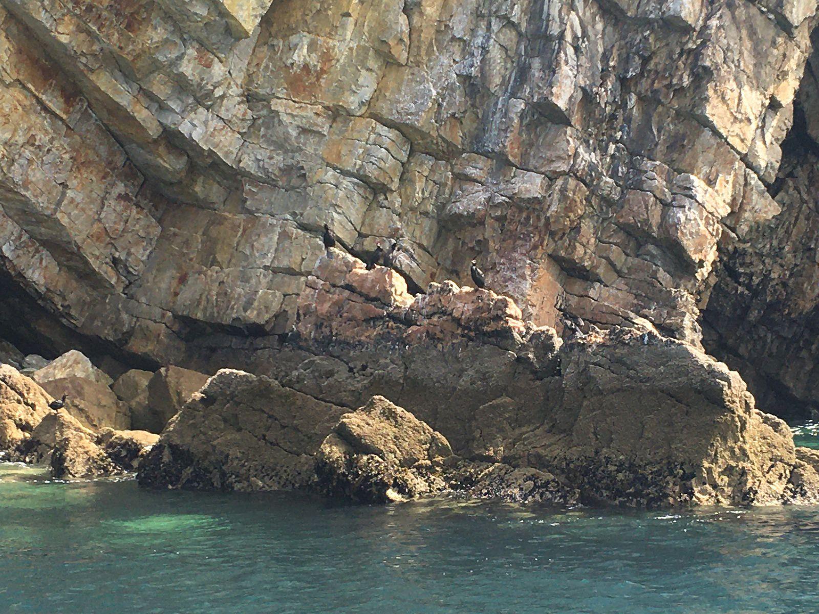 16 juin 2021 : Grottes marines / Cap de la chèvre