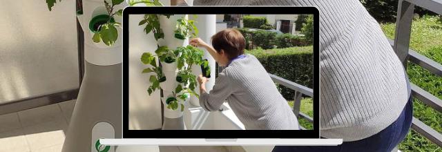 Home Potager : un potager urbain vertical et connecté pour faire pousser facilement des légumes sur son balcon