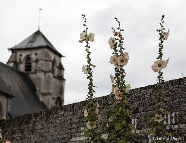 Sur la route de l'église de Villers sur Authie (80)