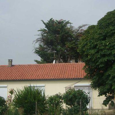 La maison du moulin au calme à Sainte Gemme dans le Gers