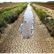 Une grave sécheresse menace la sécurité alimentaire en Afrique subsaharienne