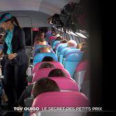 TGV Ouigo : le secret des petits prix - Le Journal du week-end | TF1