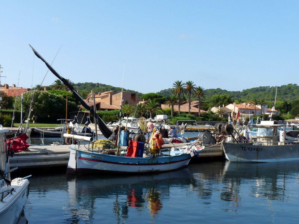 BARBA D'ORO  , TL 326265 A quai dans le port de l'ile de Porquerolles le 05 septembre 2018