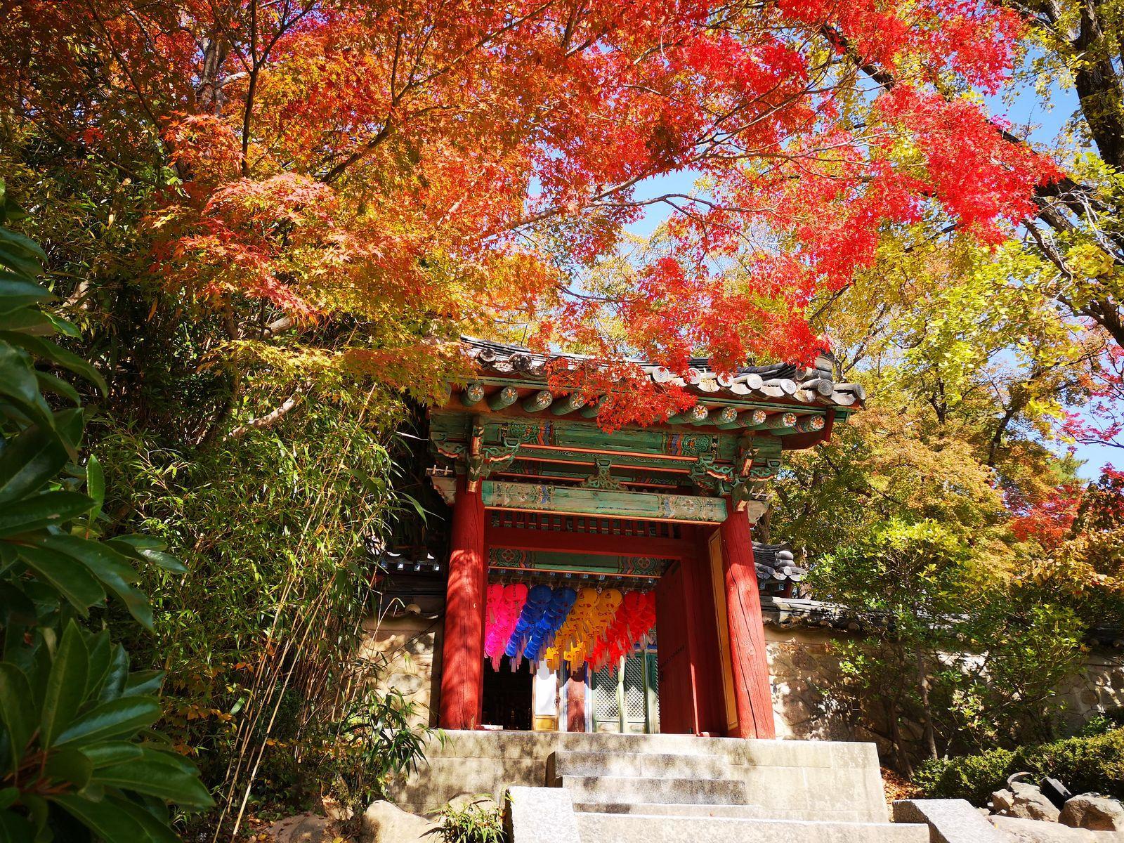 Un concentré de spiritualité au temple Bulguksa