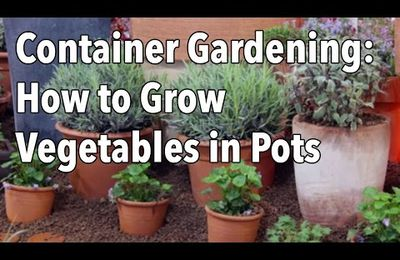 How To Plant In A Pot Without Drainage Holes