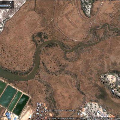 Des mangroves en pleine progradation