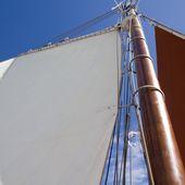 Fêtes maritimes de Brest - Terres Celtes