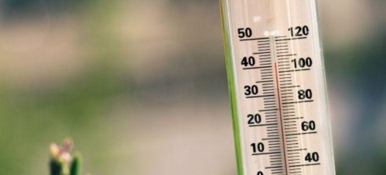 Climat et GIEC : la crosse de hockey frappe encore