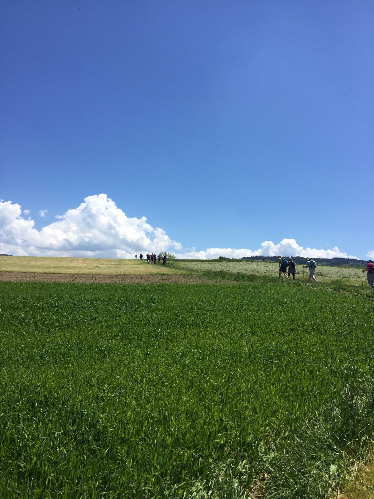 Mardi 1 juin : Grangettes près Romont Villargiroud