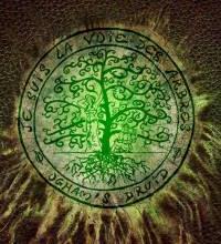 L'almanach des Bois - Collectif d'auteurs