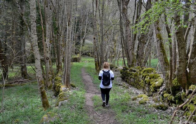 Le Sentier des Moulins dans le massif du Pilat!
