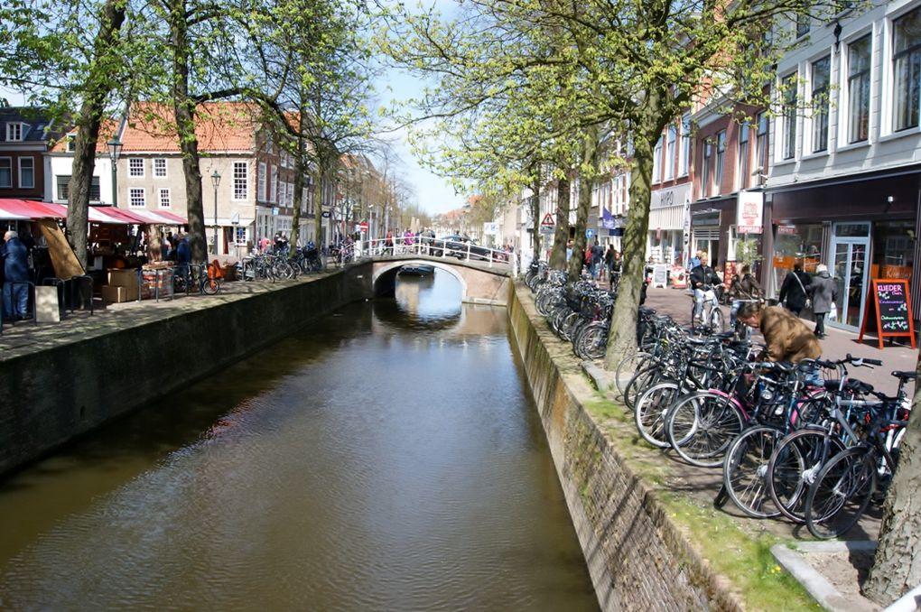 De Piney à Rotterdam