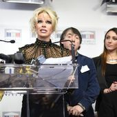 """VIDEO. """"Je demande aux députés français d'abolir le gavage"""", lance l'actrice Pamela Anderson"""