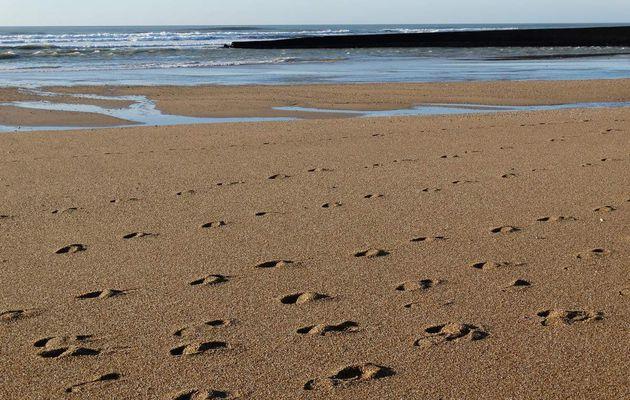 Promenade d'automne sur les plages d'Olonne sur Mer