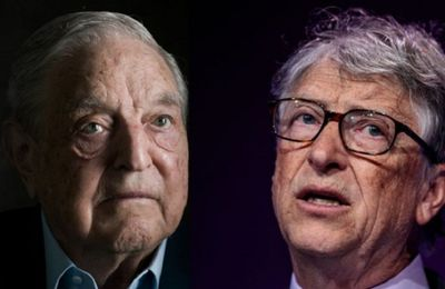 Open Society Soros et Microsoft de Bill Gates financent le Conseil de l'Europe ?