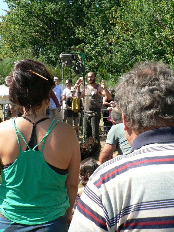 La fête de la laine et du mouton à Peillac : une belle journée de rencontres