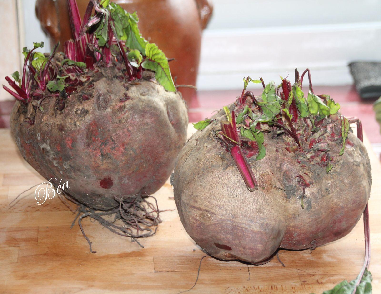 Salade de betteraves rouges aux oeufs vinaigrette au raifort