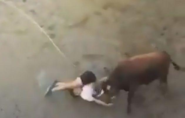 Taureau lance l'homme dans les airs avant de le traîner au stylo rond au festival
