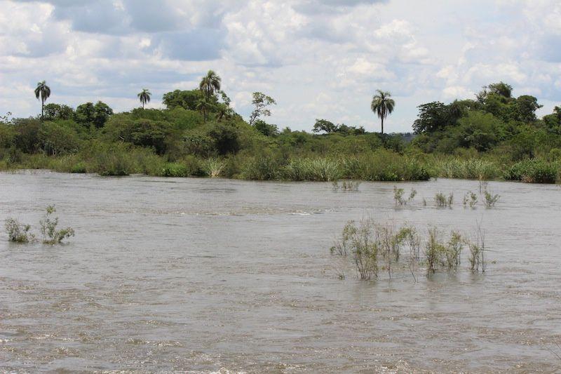 Les chutes d'IGUAZU- Argentine : Les gorges du Diable