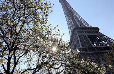 Pour un quart des ados américains, la France est une dictature