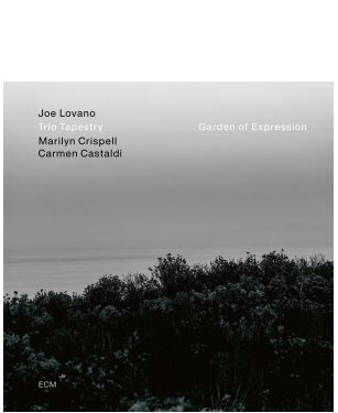 💿 Joe Lovano  Trio Tapestry • Garden of Expression