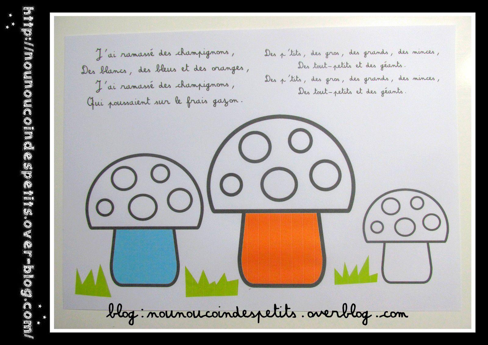 .. J'ai ramassé des champignons des blancs, des bleus et des oranges .....