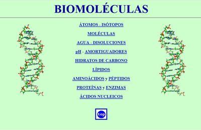 UPV/EHU Curso de Biomoléculas