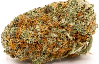 BUY QUALITY GIRL SCOUT COOKIES STRAIN ONLINE