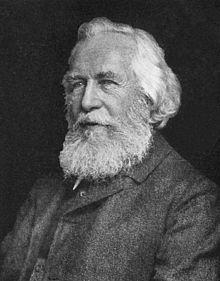 Haeckel y la gestación de la ecología.