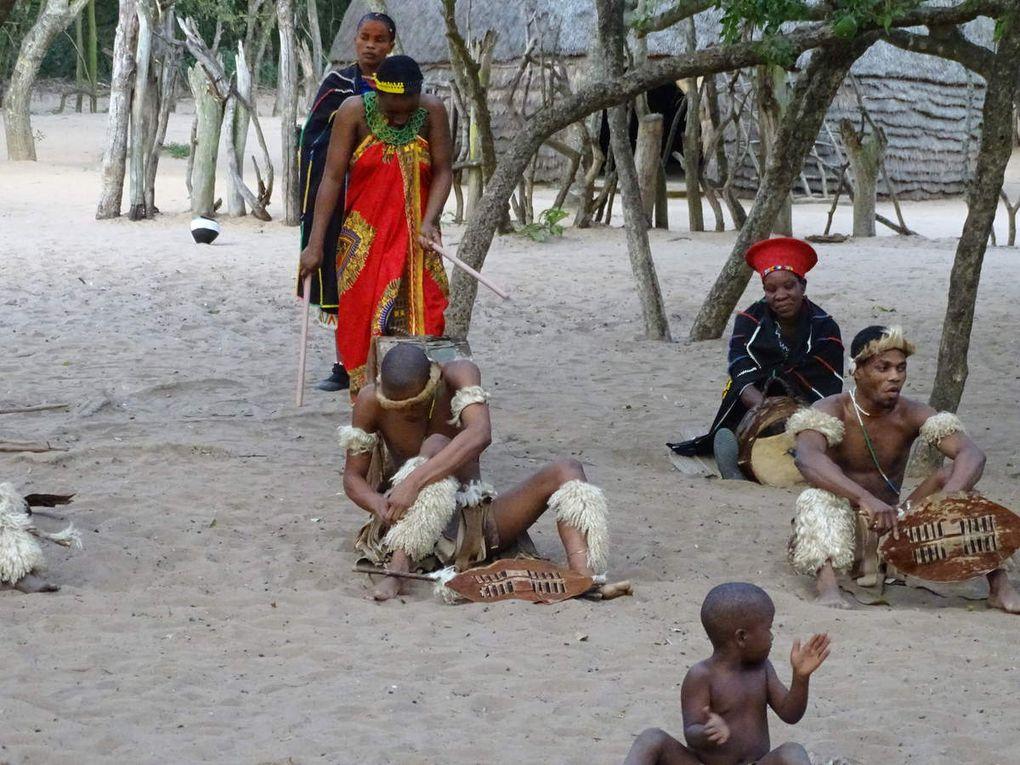 Jour 4 ZuluLand