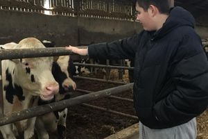 Des élèves internes en visite à la ferme