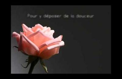 Poème pour la St-Valentin...