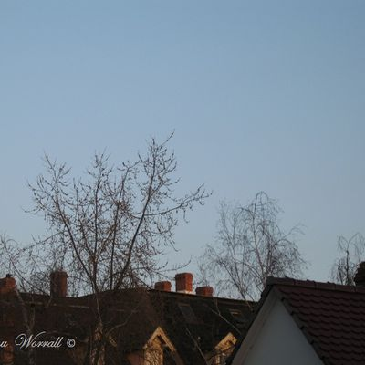 Ciel d'Alsace 256
