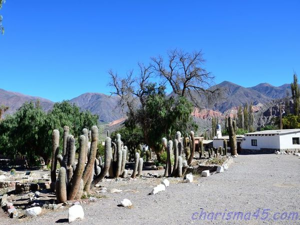 Pucara del Tilcara (Argentine en camping-car)