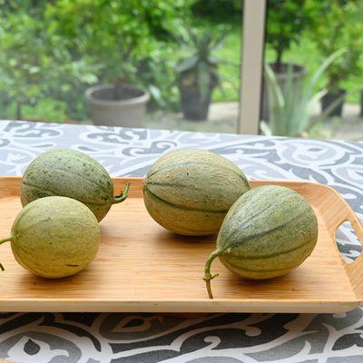 Voilà les melons ...