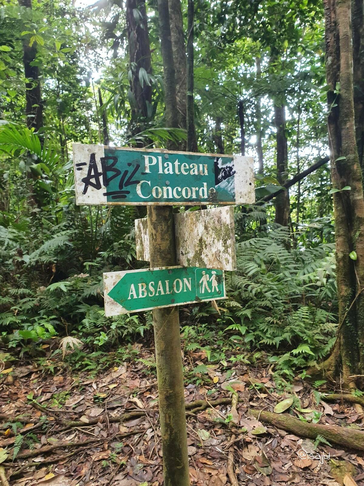 Randonnée Absalon-La Démarche