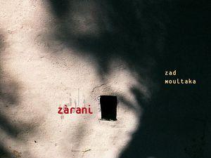 Les Disques de l'année 2004 : de Pascal Dusapin à Sonic Youth.