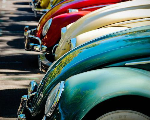 VW Bugs..oh yes