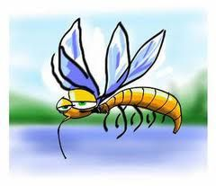 CITATION INSECTICIDE