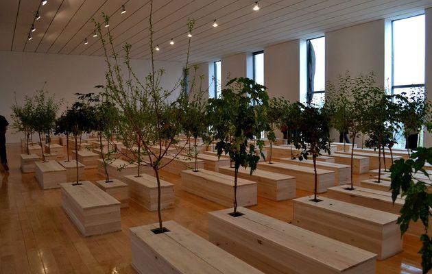 Exposition sur Yoko Ono au Musée d'Art Contemporain de Lyon