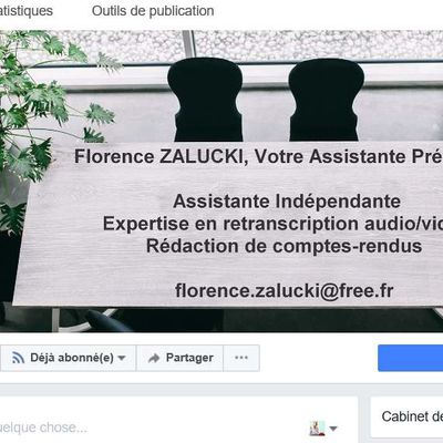 BLOG PROFESSIONNEL/PAGE FACEBOOK