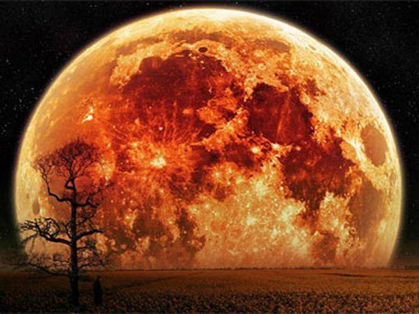 """Lundi 14 novembre a lieu la """"super Lune"""", plus grande et plus lumineuse que jamais !"""