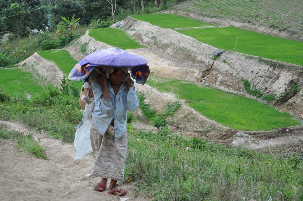 Une journée sur le chemin de la petite rizière