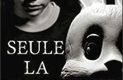 *SEULE LA HAINE* David Ruiz Martin* Taurnada Éditions* par Cathy Le Gall*