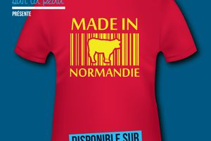 T-shirt France - Basse et Haute Normandie - Made in Normandie.