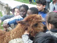 Le CPB au zoo du bois d'Attilly